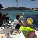 pranzo con i gabbiani in barca a vela